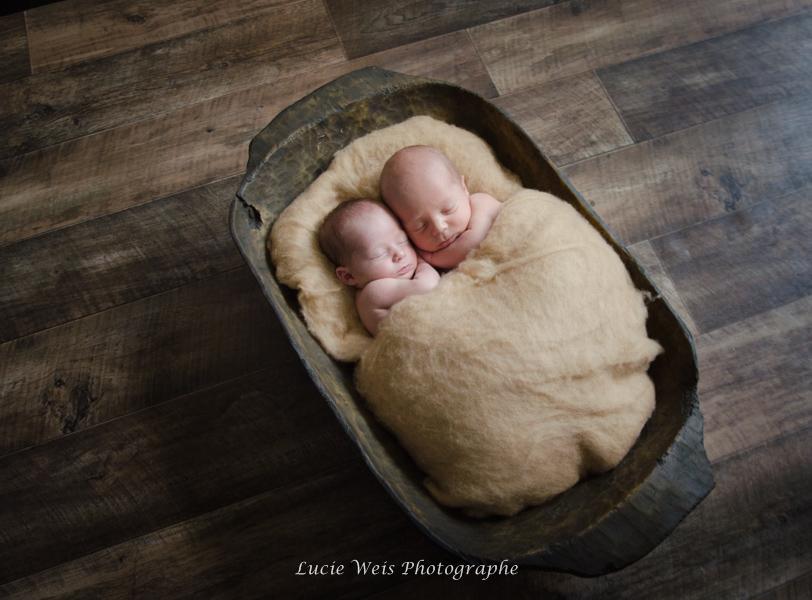 Séance photographie bébé jumeaux à Paris